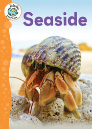 The Seaside <br> KS1 <br>(10 Books) by BookLife