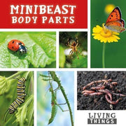 Minibeasts <br> KS1 <br>(16 Books) by BookLife