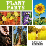 How Plants Grow <br> KS1 <br>(10 Books) by BookLife