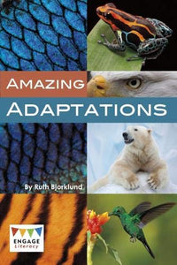 KS2 Evolution & Adaptation 10 Books (KS2) by BookLife