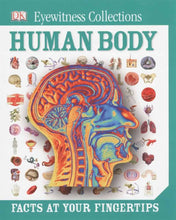 Load image into Gallery viewer, The Human Body (KS2) by BookLife