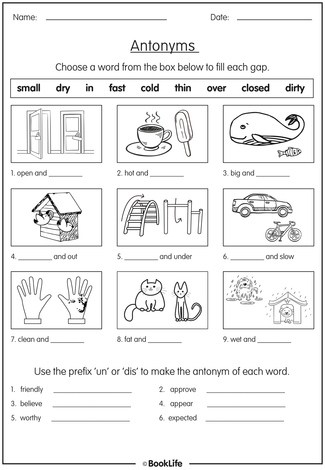 Literacy Activity Worksheet