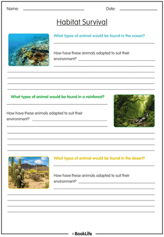 Habitats Activity Sheet
