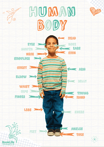 Human Body Poster by BookLife