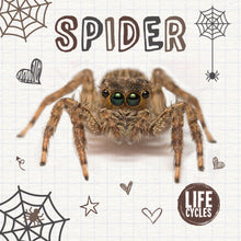 Load image into Gallery viewer, Life Cycles: Spider e-Book