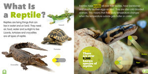 Living Things and Their Habitats: Reptiles e-Book