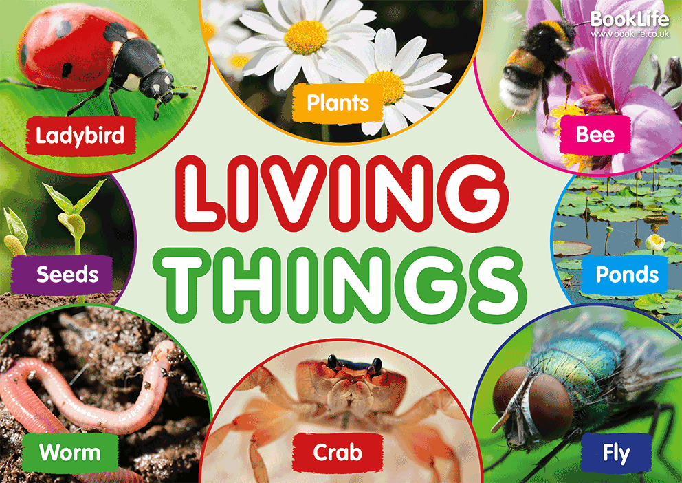 Free Living Things Poster – BookLife