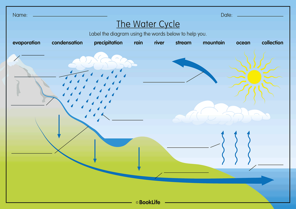 Free Water Cycle Activity Sheet Booklife