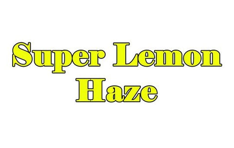 Super Lemon Haze Terpenes