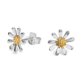 Marguerite Daisy Studs Large (12mm)
