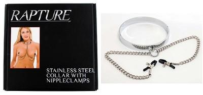 Rapture Stainless Steel Collar With Nipple Clamps