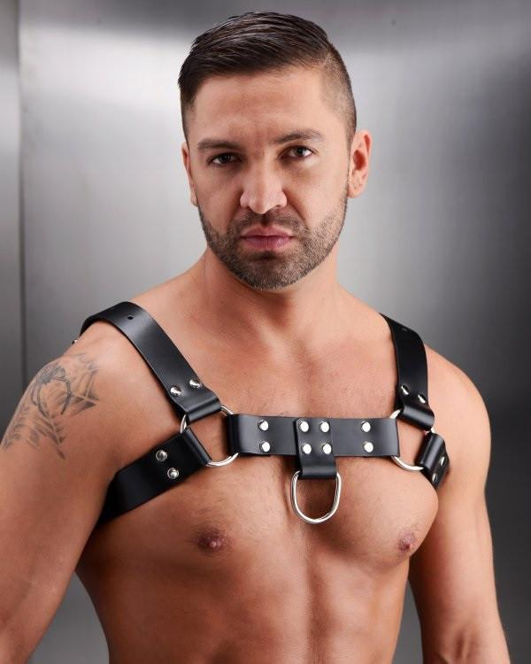 Strict Leather English Bull Dog Harness