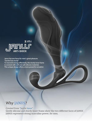 Zini Janus Anti-Shock Prostate Massager - Small, Medium or Large Prostate Massagers - Zini Prostate Toys Zini