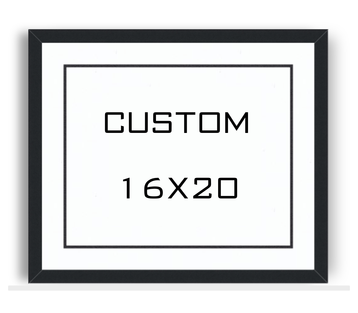 Custom 16x20 Framed Print