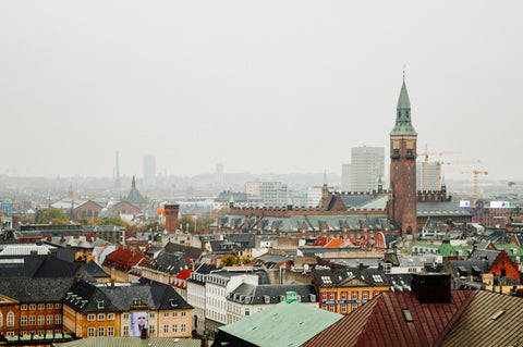 Copenhagen Roof Tops