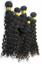 Nefertiti (Brazilian Curly)