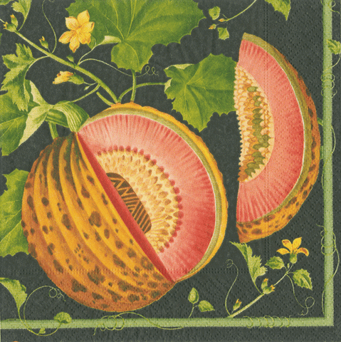Caspari Brookshaw Melons Cocktail Napkins