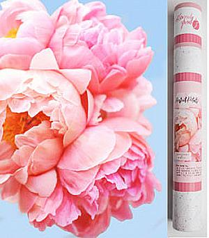 Perfect Petal Paint by Number Kit