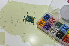 National Parks Push Pin Map