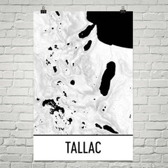 Mount Tallac Topographic Map Art