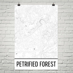 Petrified Forest National Park Topographic Map Art