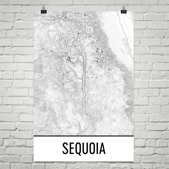 Sequoia National Park Topographic Map Art