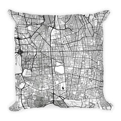 Tehran black and white throw pillow with city map print 18x18