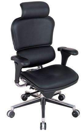 Eurotech Ergohuman Leather High Back Chair with Headrest LE9ERG