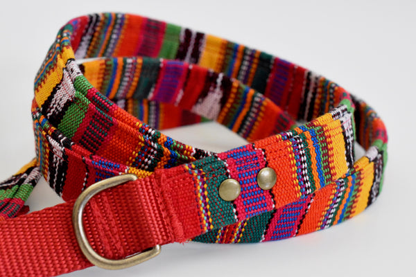 Fiesta Leash