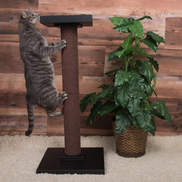 Extra Tall Scratching Post and Perch