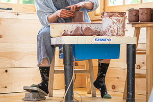 Women's Lifestyle Socks