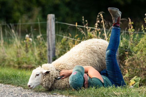 Woman hugging a merino wool sheep. We get our yarns from responsible wool standard farms.