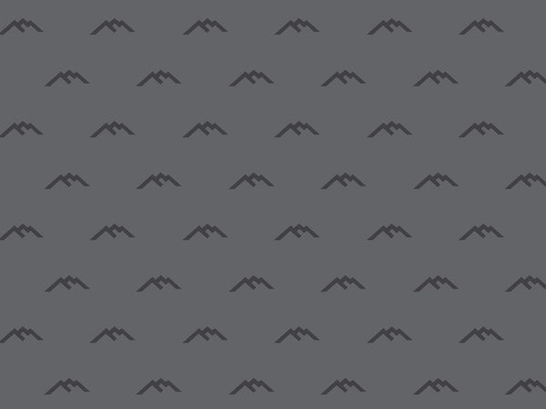 Gray zoom background with the darn tough mountain logo on it