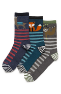 Women's Animal Haus Crew Light - Full Haus 3-Pack