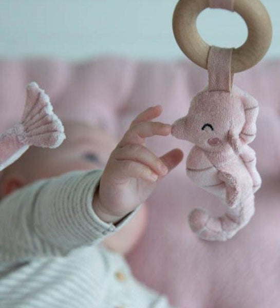 Little Dutch: Baby gym - ocean pink