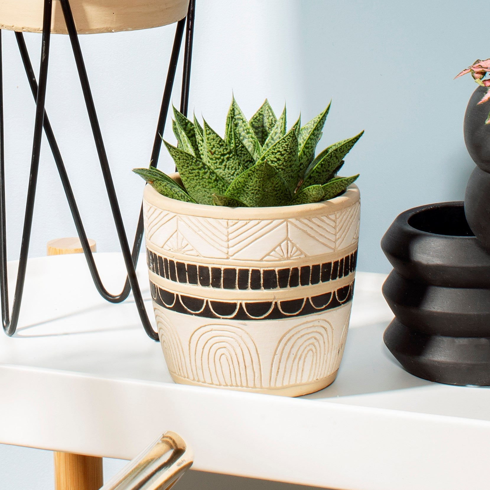 Black & White Sgraffito Planter