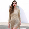 Tula Sequin Fringe Dress
