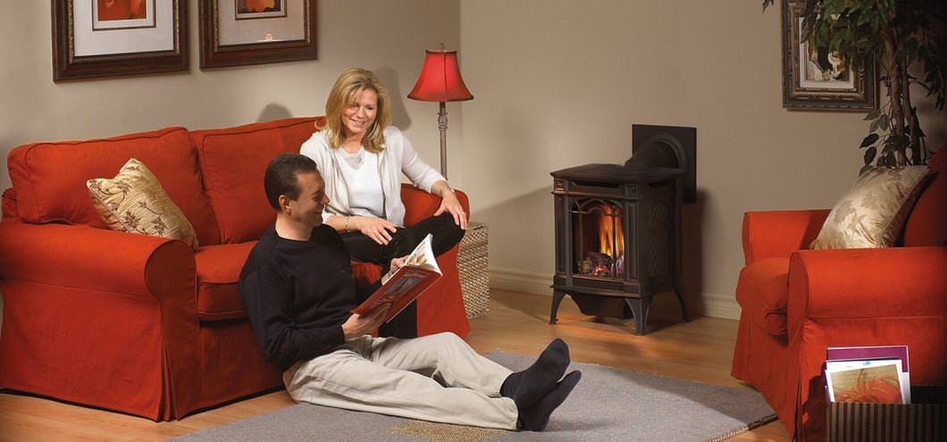 Napoleon Arlington™ Direct Vent Gas Stove GDS20NNSB - The Outdoor Fireplace Store