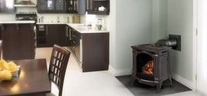 Napoleon Bayfield™ Direct Vent Gas Stove GDS25N-1 - The Outdoor Fireplace Store