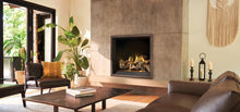 Load image into Gallery viewer, Napoleon Elevation™ X 42 Direct Vent Gas Fireplace EX42PTEL - The Outdoor Fireplace Store