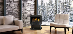 Napoleon Haliburton™ Direct Vent Gas Stove GDS28-1NSB - The Outdoor Fireplace Store