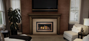 Napoleon Inspiration™ ZC Gas Fireplace Insert GDIZC-NSB - The Outdoor Fireplace Store