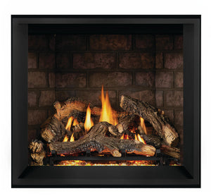 Napoleon Elevation™ X 36 Direct Vent Gas Fireplace EX36NTEL - The Outdoor Fireplace Store