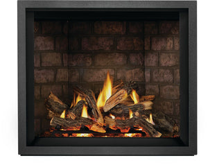 Napoleon Elevation™ X 42 Direct Vent Gas Fireplace EX42PTEL - The Outdoor Fireplace Store