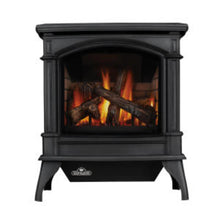 Load image into Gallery viewer, Napoleon Knightsbridge™ Direct Vent Gas Stove GDS60-1NNSB - The Outdoor Fireplace Store