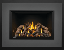 Load image into Gallery viewer, Napoleon Oakville™ X4 Gas Fireplace Insert GDIX4N - The Outdoor Fireplace Store