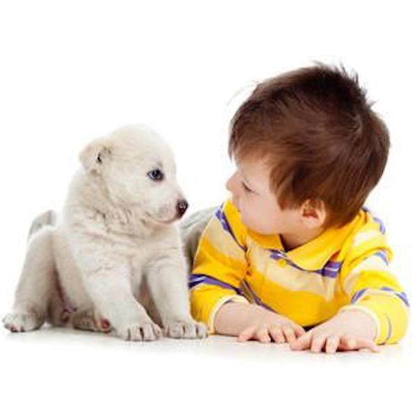 Dogs + Children = A Valuable Partnership