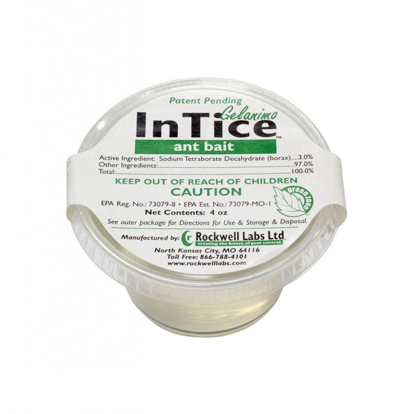 InTice Gelanimo Ant Bait 4 oz. Cup