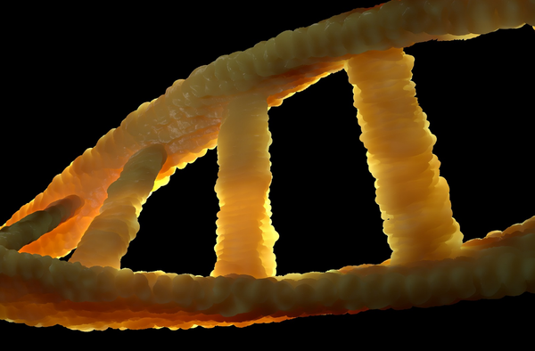 Is Genetics Changing What it Means to be Human?
