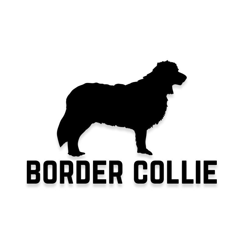 Border Collie Car Decal Dog Sticker for Windows